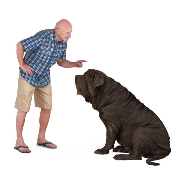 3d man and dog mastino - scanned 3d models - Renderbot